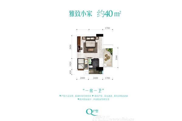 雅居乐君域公馆q户型图约40平一房一卫
