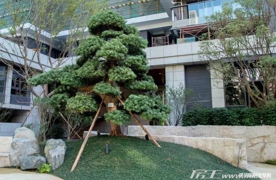 天麟府·瑧林实景图