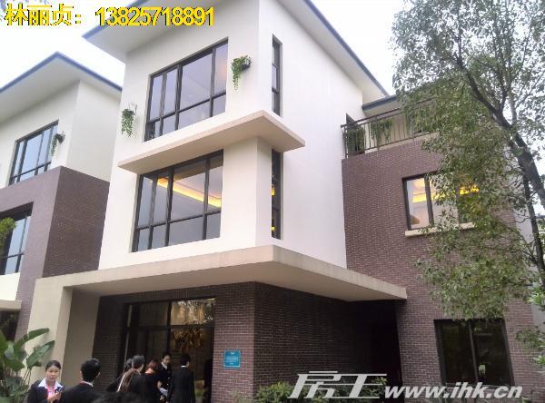中惠松湖城别墅外立面