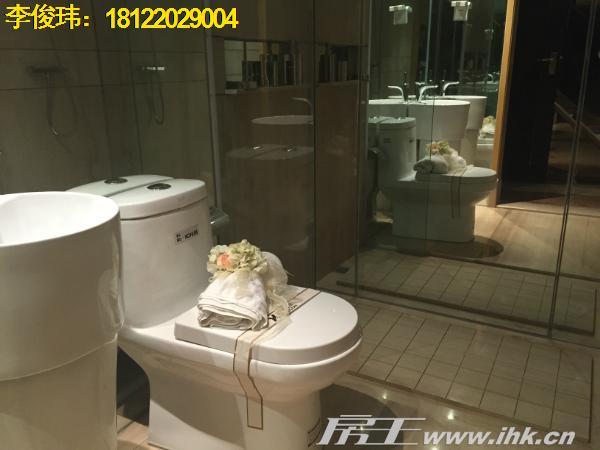 大旺·海印又一城 1小时肇广深生活圈 轻轨30分钟直达广州