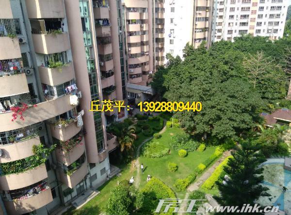 新 番禺大石金城花园原装四房单位 带装修每平米9500元出售